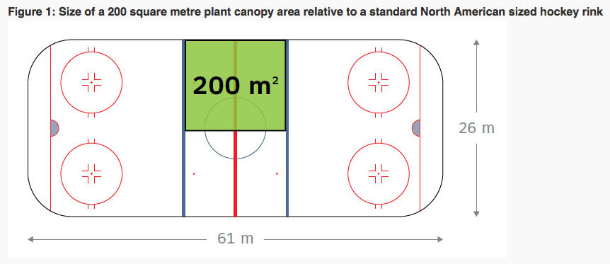 cultivating sizing