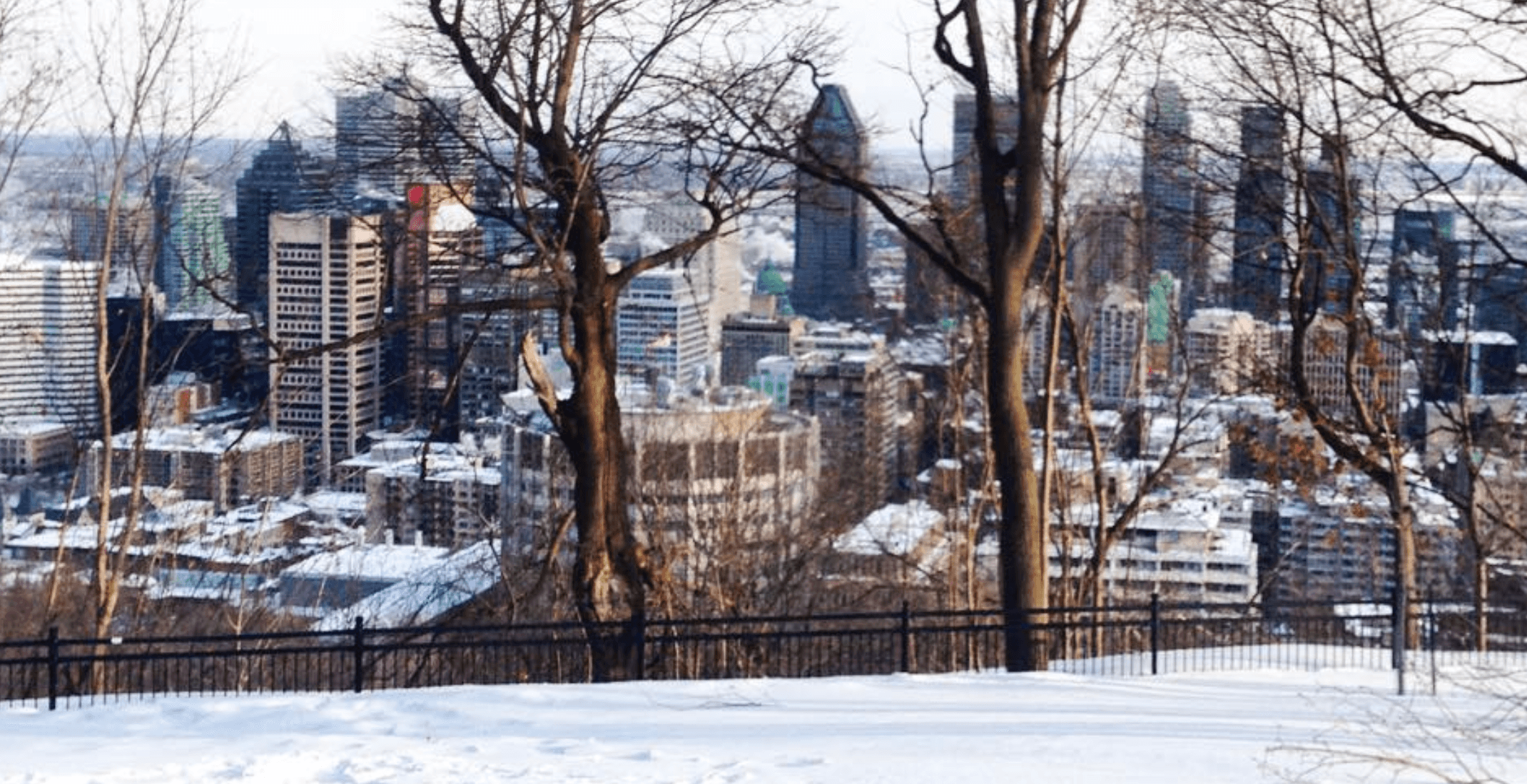 This is what the official first day of spring looks like in Montreal (PHOTOS)