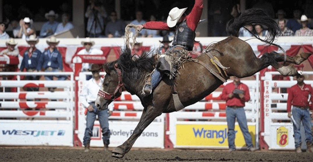6 Rodeo Events You Have To Watch At Calgary Stampede 2018