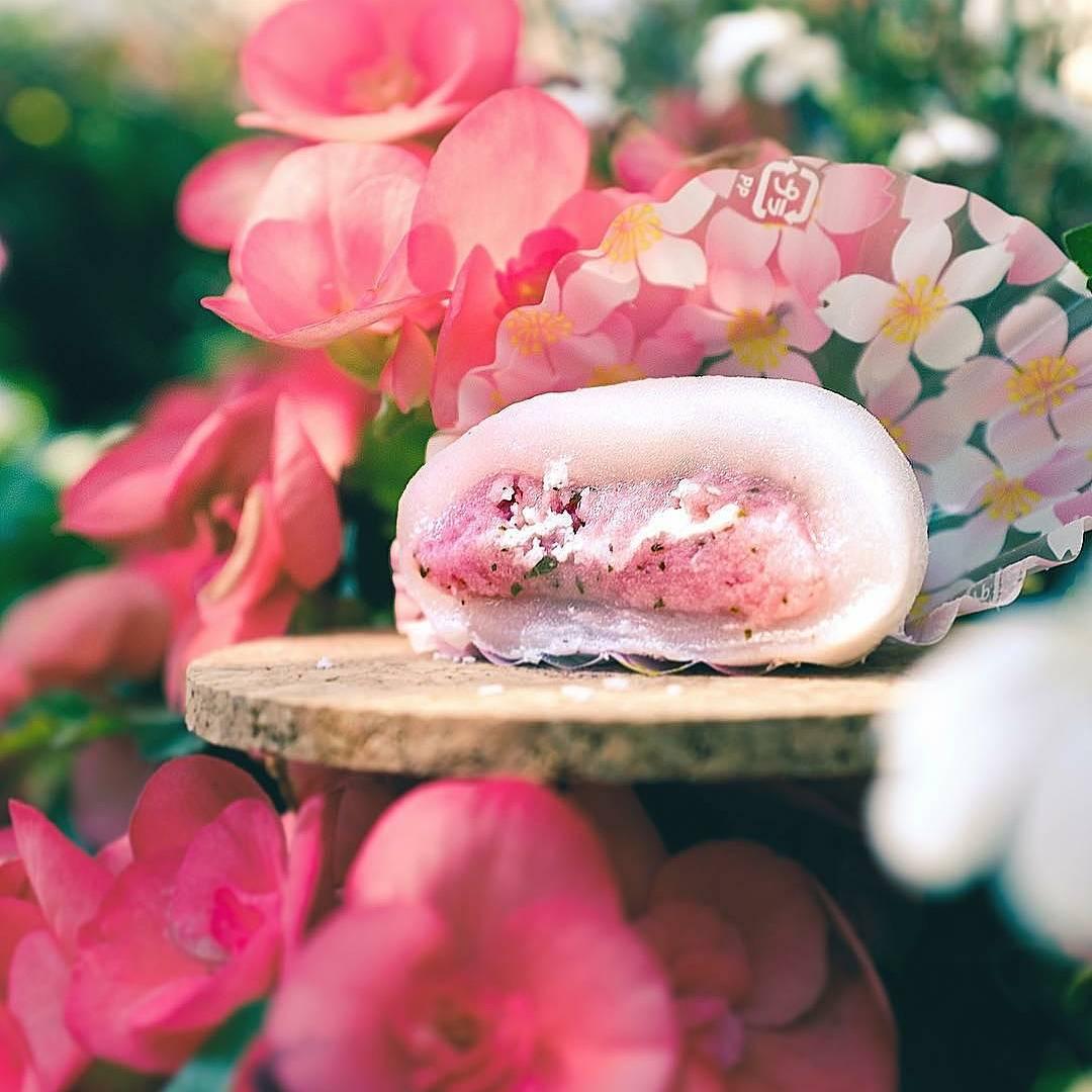 sakura treats