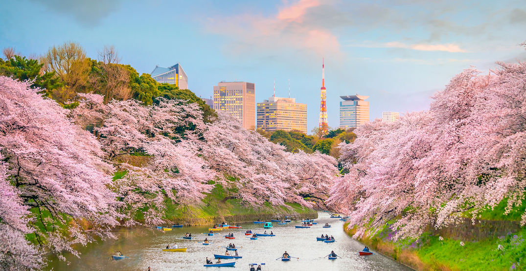 You can fly from Vancouver to Tokyo for $572 roundtrip