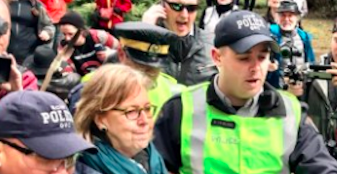 Canada's Green Party leader arrested at Kinder Morgan pipeline protest