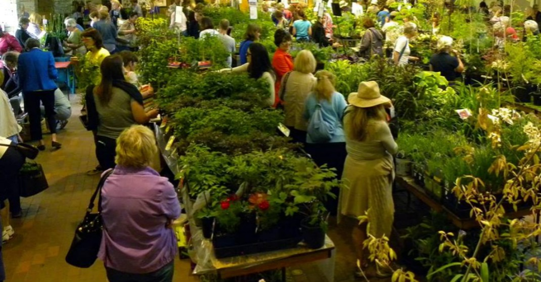 There's a massive plant sale in Toronto this spring