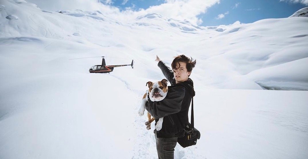 Cole Sprouse's adventure with this famous Vancouver dog is EVERYTHING (VIDEO)