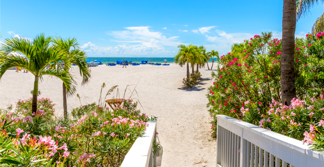You can fly from Toronto to Florida for $237 return next month