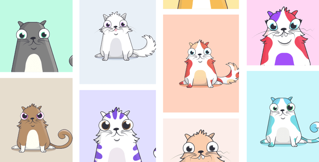 The BC blockchain company behind CryptoKitties just raised $15M in financing