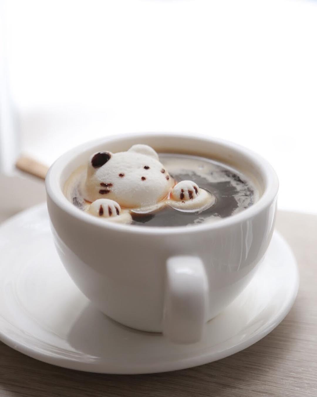 3D lattes