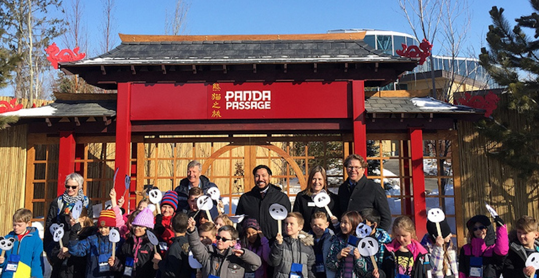 The new addition to the Calgary Zoo's Panda Passage habitat has been unveiled