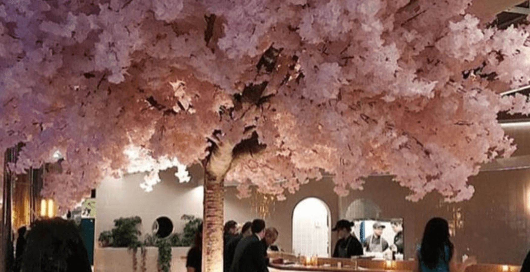 You can find a stunning indoor cherry blossom tree at this Montreal bar (PHOTOS)
