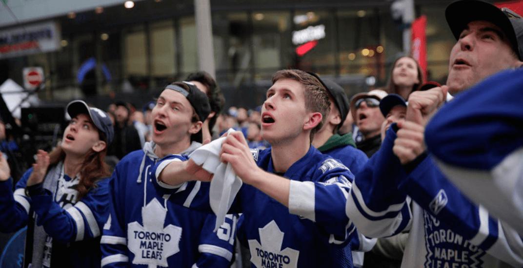 Maple leafs fans