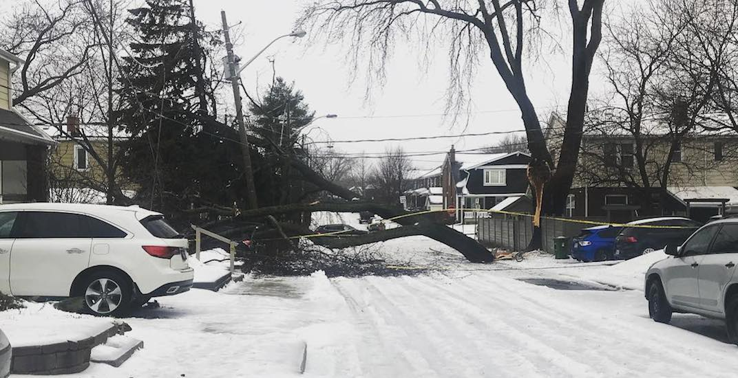 27 shots of the powerful ice storm wreaking havoc on Toronto this weekend (PHOTOS)