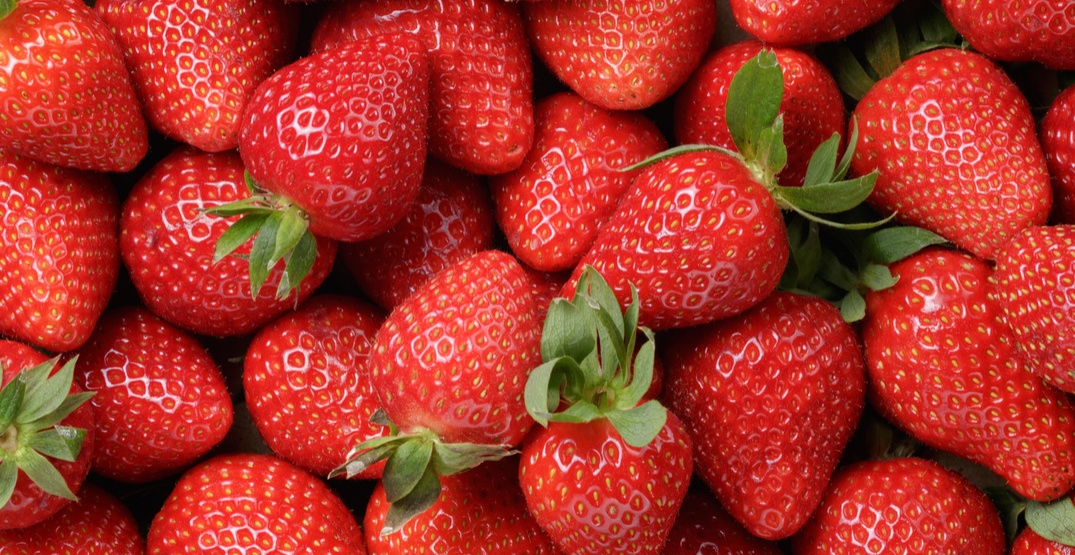 Montana brand frozen strawberries recalled due to Hepatitis A contamination
