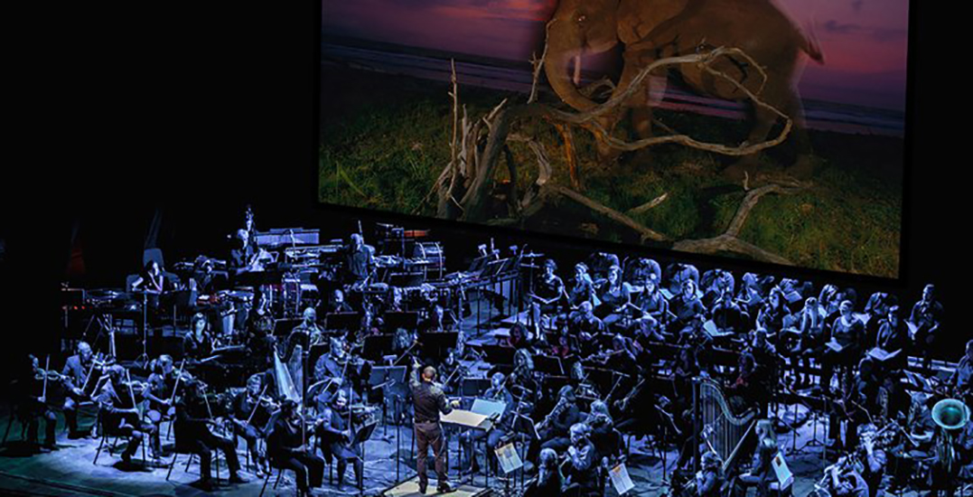 National Geographic's Symphony for our World tour is coming to Montreal this fall