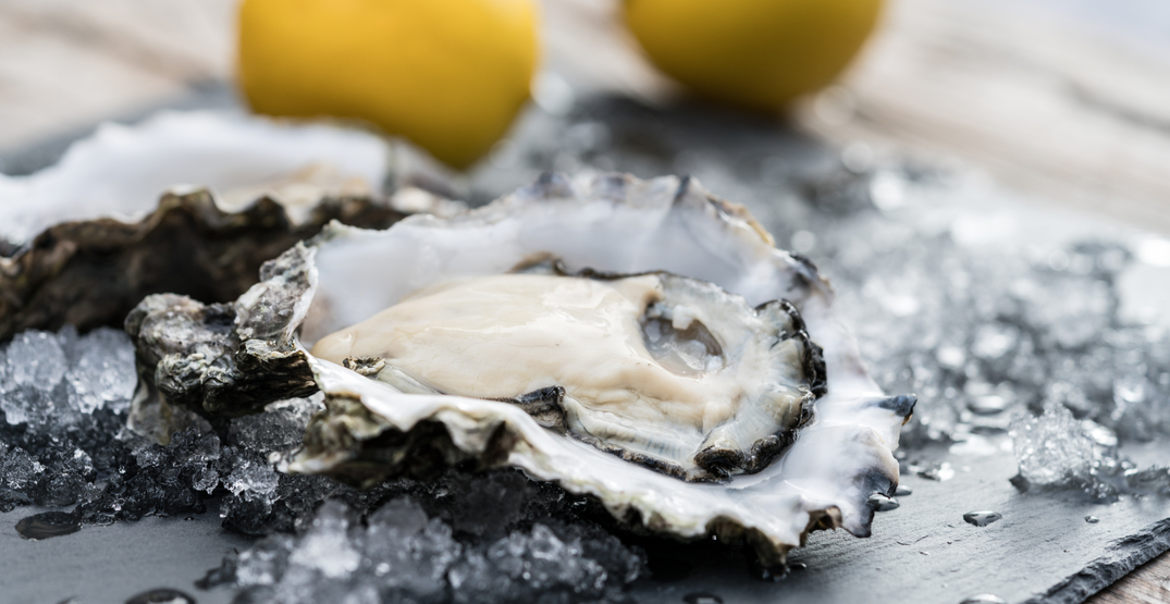 Source of BC oyster norovirus contamination has still not been determined