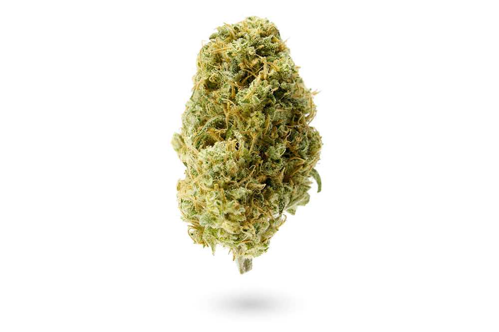 strains to fight fatigue