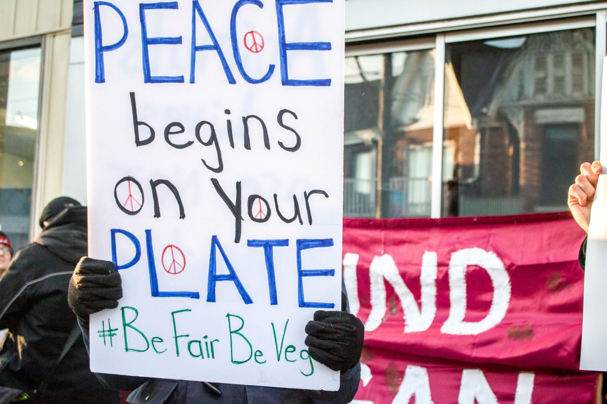 antler protest
