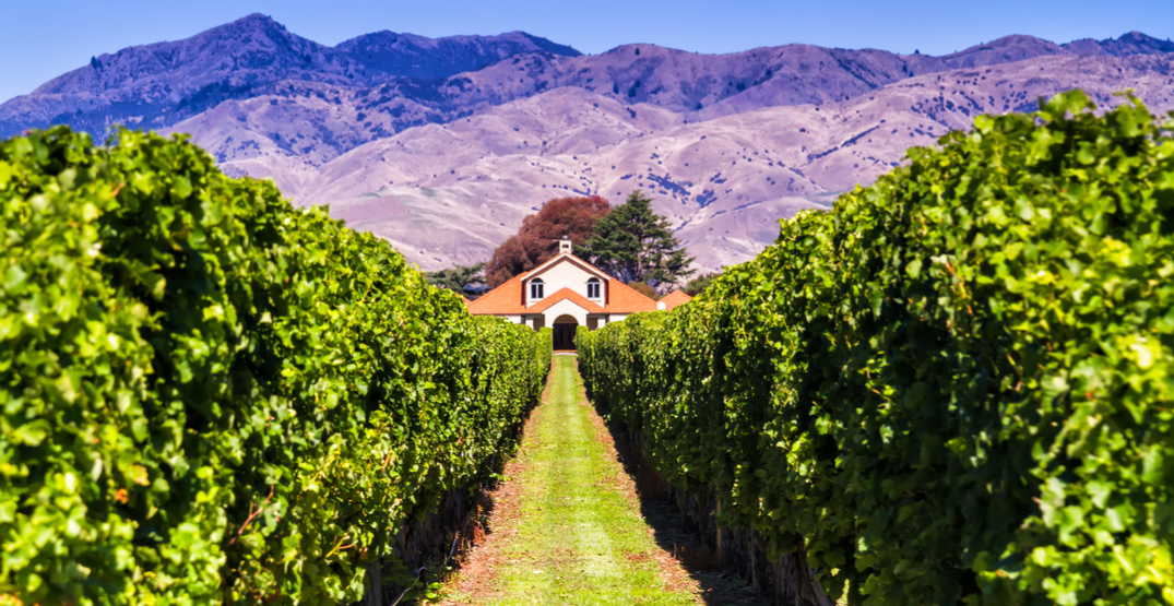 Sip on New Zealand's finest at this drool-worthy wine dinner (CONTEST)
