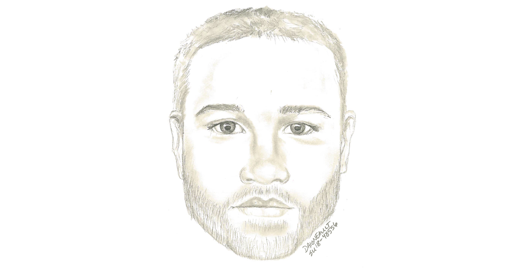 Surrey RCMP release sketch of suspect after sexual assault in Hawthorne Park