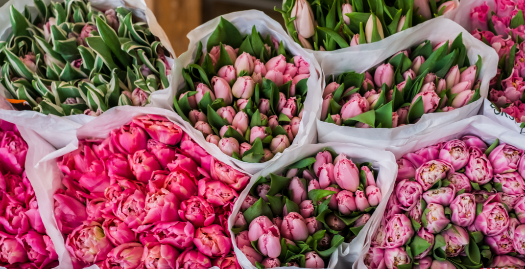 Free Mother's Day market happening at Union Station this month