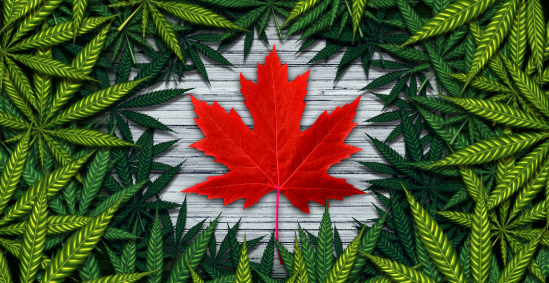 Cannabis curriculum teaches collaboration in the industry