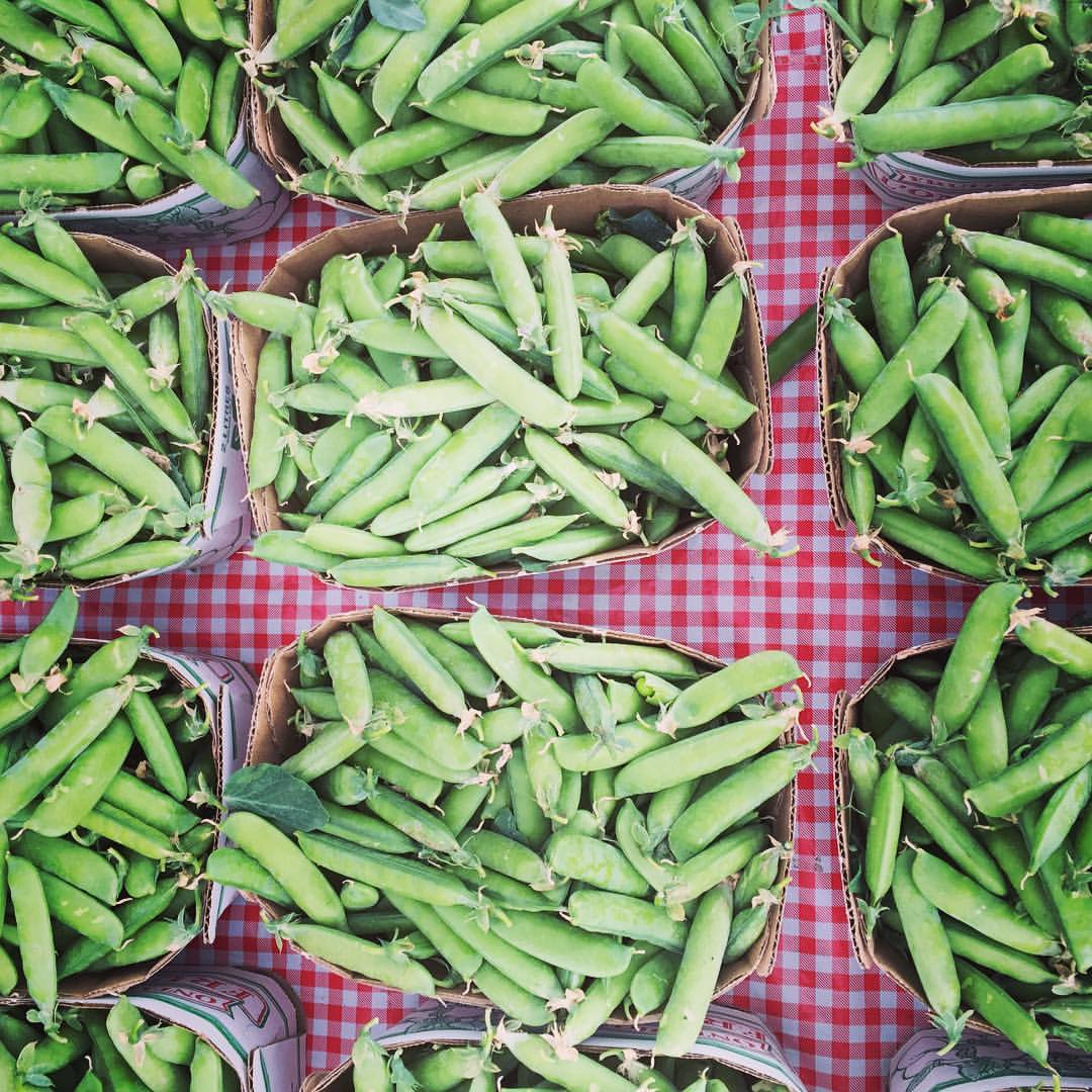 annette village farmers market