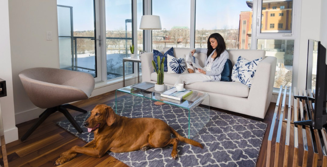 Discover luxury living in Calgary's riverside community, Avenue West End