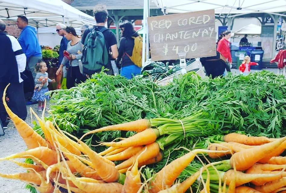 Junction Farmers Market