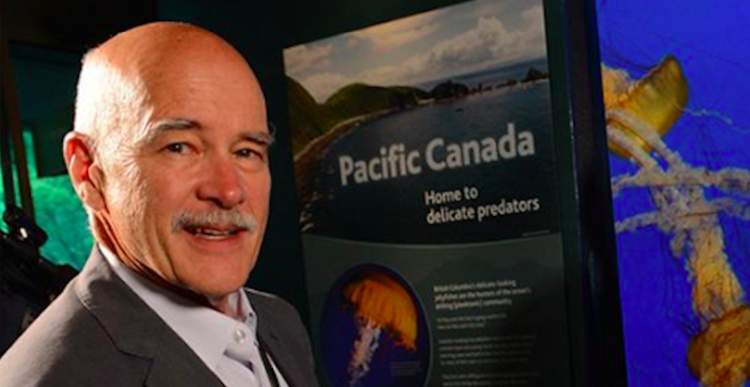 Vancouver Aquarium CEO stepping down after 25 years