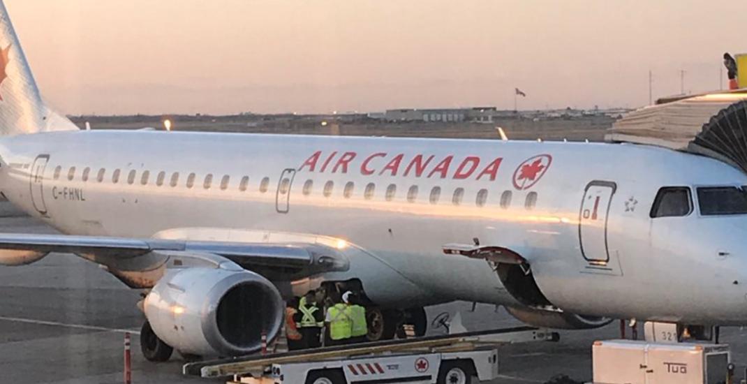 Raccoon for a few hours delayed Air Canada flight