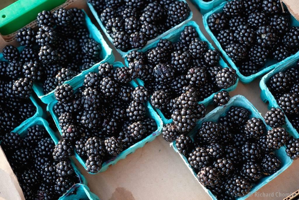 Village Market Organic