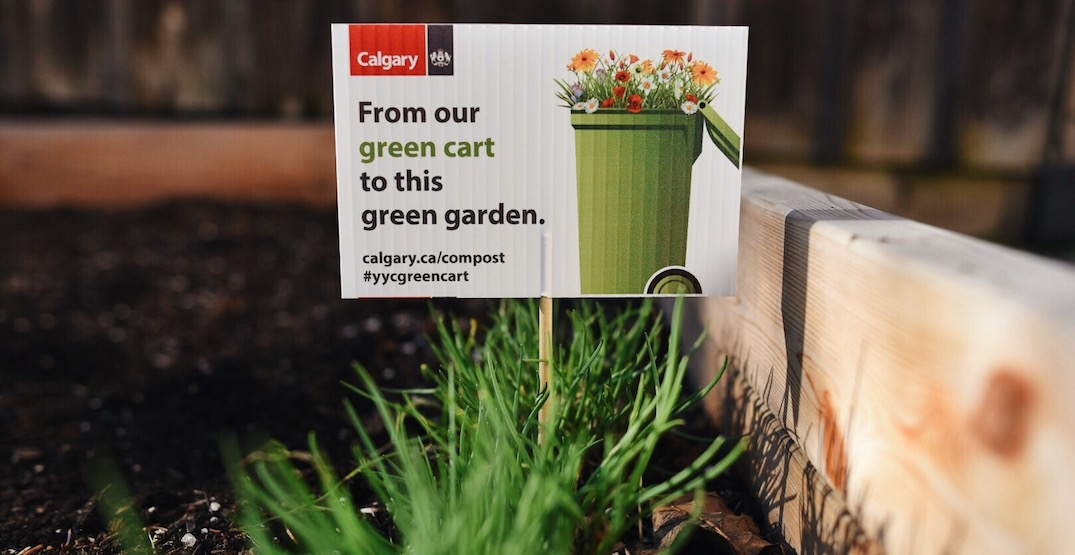 Get your garden growing with FREE compost from the city