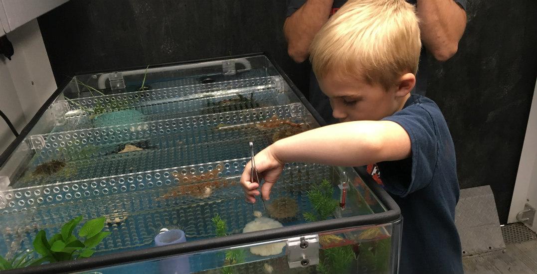 Vancouver aquarium pop uptsawwassen mills