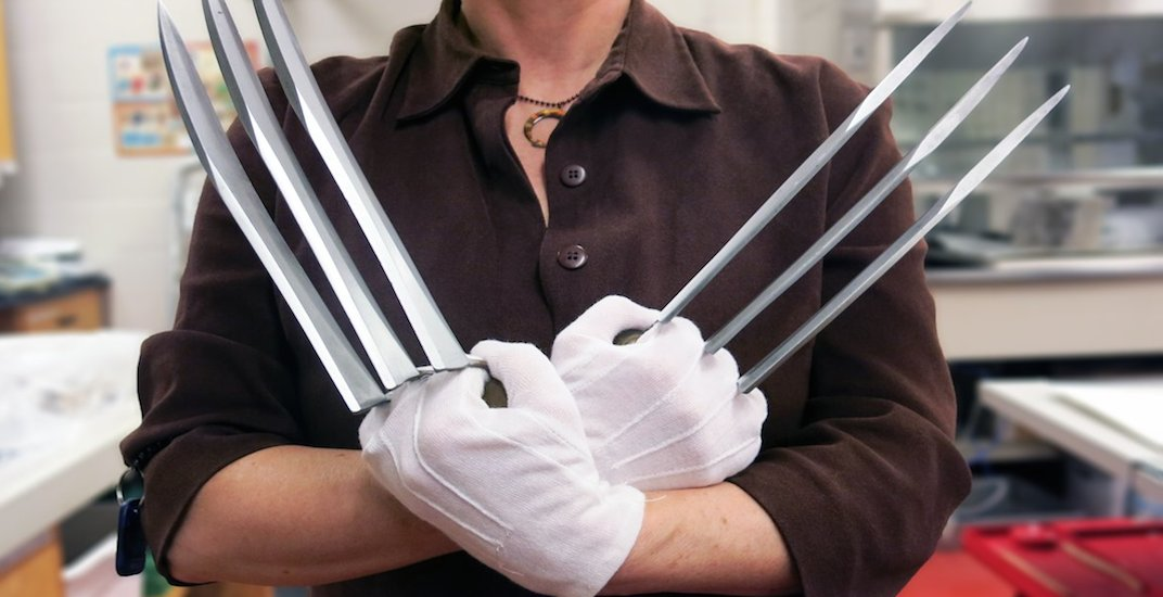You can see Wolverine's real claws at the Toronto Reference Library this month