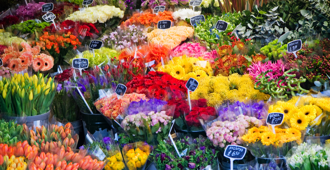 There is a FREE flower market happening in Montreal this month
