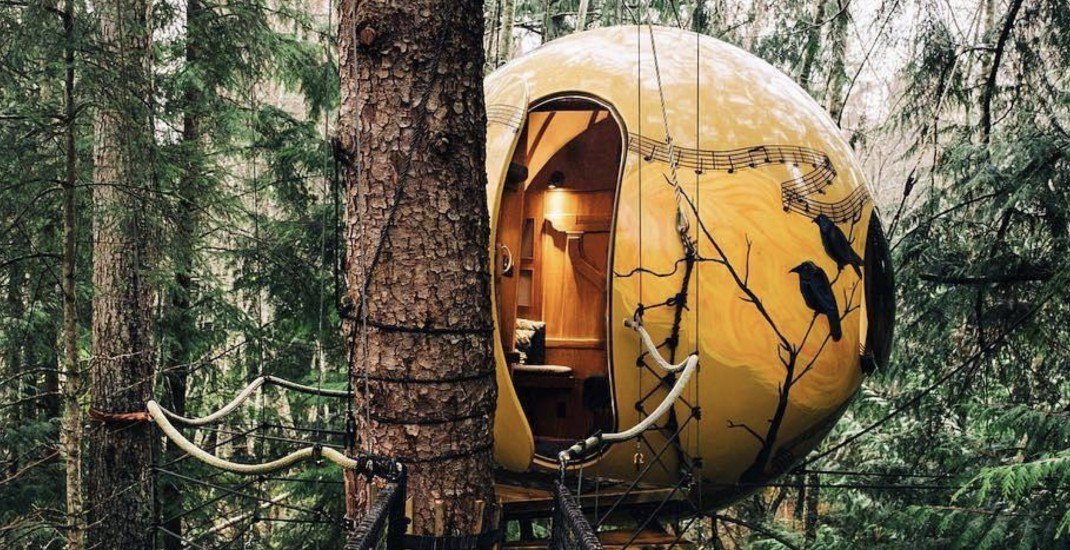 You can sleep in these dreamy tree pods in this BC forest (PHOTOS)
