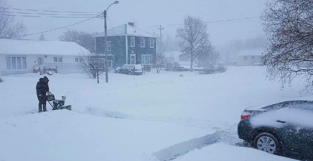 This is what Newfoundland looks like right now (PHOTOS)