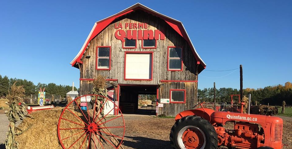 Experience country life at Montreal's closest interactive farm