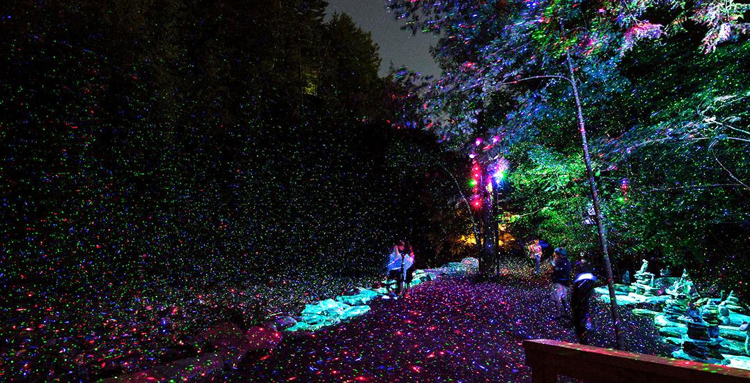 Tiff foresta lumina 13