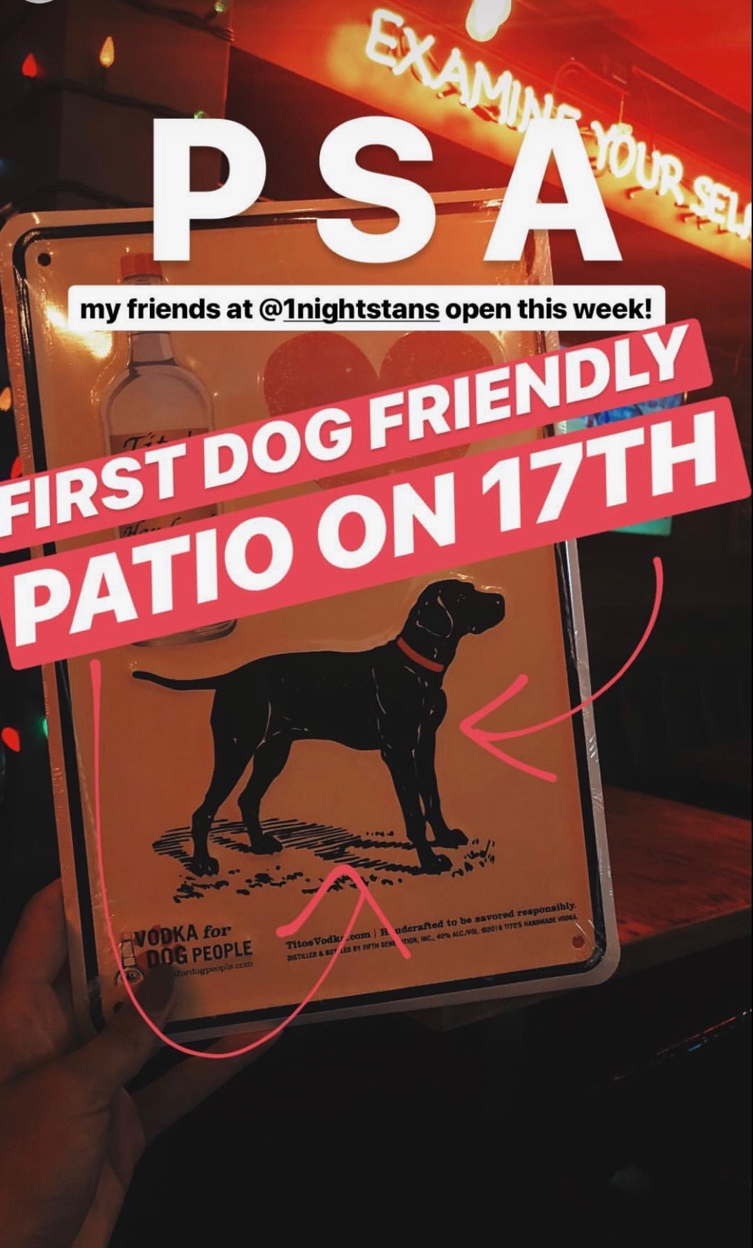 One Night Stan's Dog-Friendly Patio