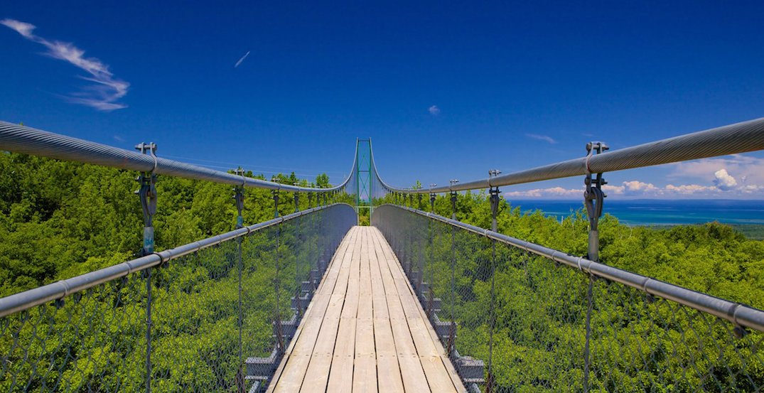 Southern Ontario's longest suspension bridge in only 2 hours from Toronto (PHOTOS)