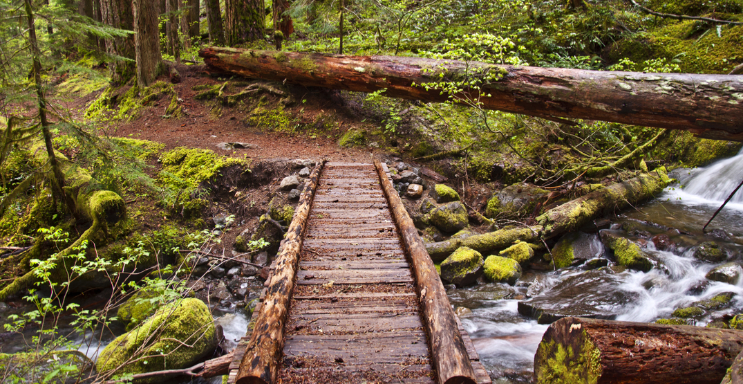 You can be fined $10,000 in BC for building an illegal hiking trail