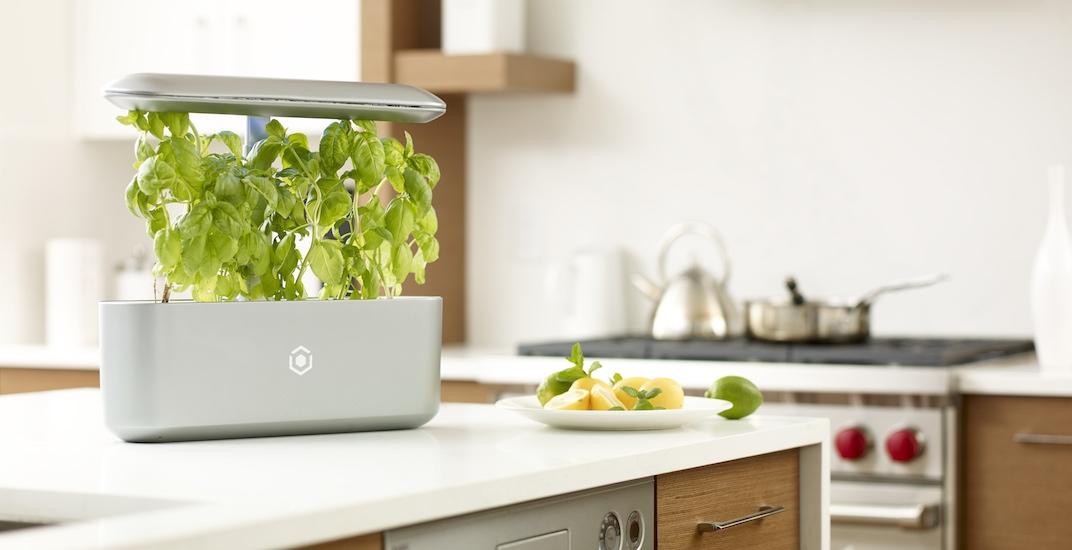 Vancouver-based smart garden startup raises $2.6 million for retail launch