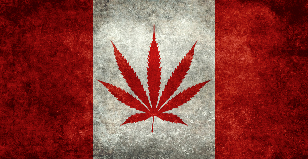 Cannabis legalization in Canada officially law as bill receives royal assent