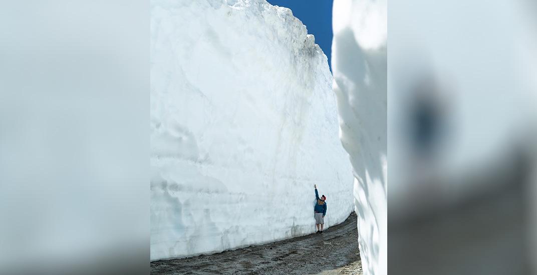 Whistler's 'snow walls' are incredible right now (PHOTOS)