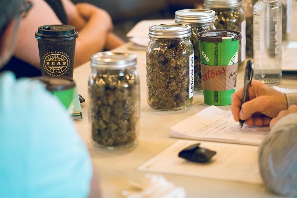 Cannabis expert