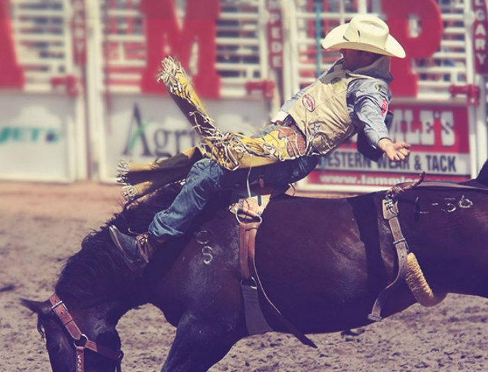 59 Things To Do At The 2019 Calgary Stampede Listed