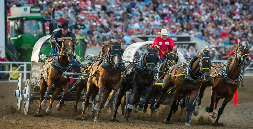 Calgary stampedefacebook