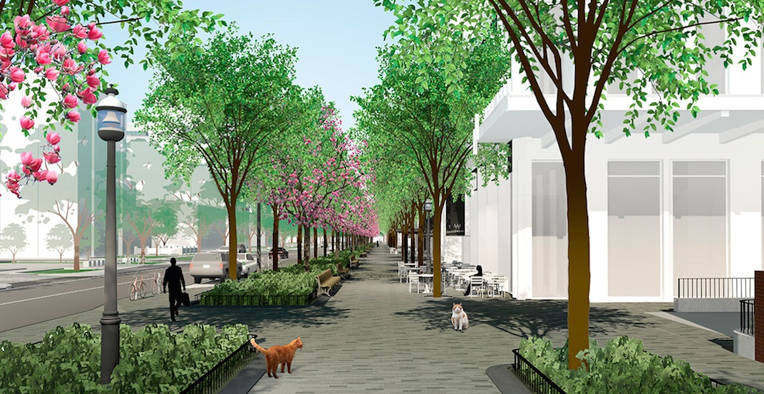 Toronto is getting two cat-themed parks (RENDERINGS)
