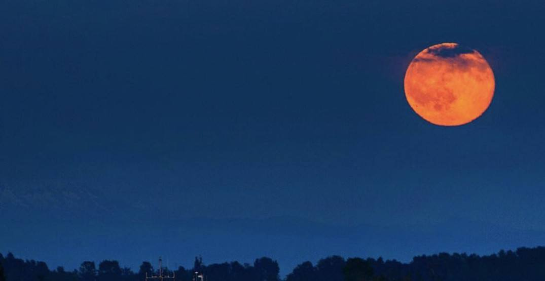 A full Strawberry Moon will light up Toronto skies tonight