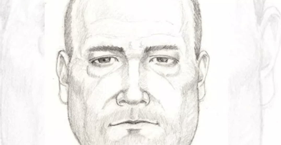 Police seeking North Shore driver who allegedly exposed himself to children